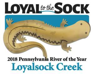 official-river-of-the-year-logo-cropped